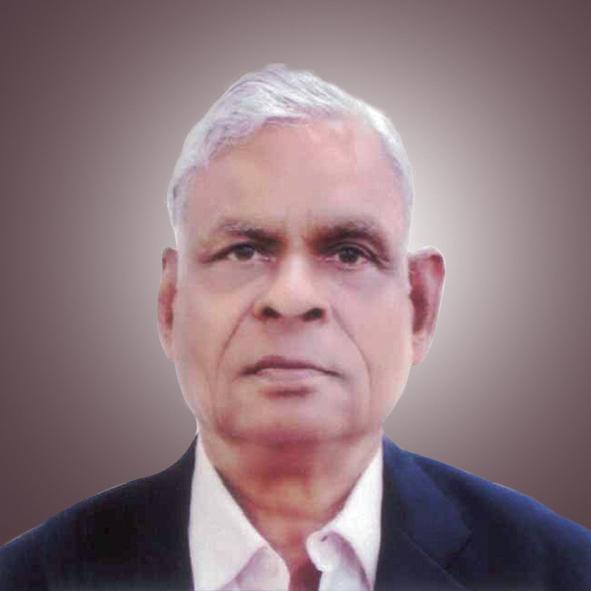 Vinati Independent Director