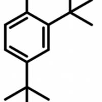 24-DI-TERTIARY-BUTYL-PHENOL-24-DTBP-CAS-96-76-4